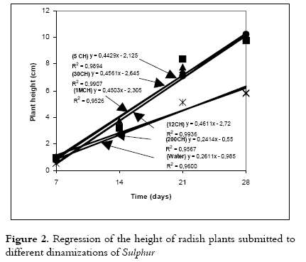 Effect of the Homeopathic Solution Sulphur on the Growth and Productivity of Radish 3