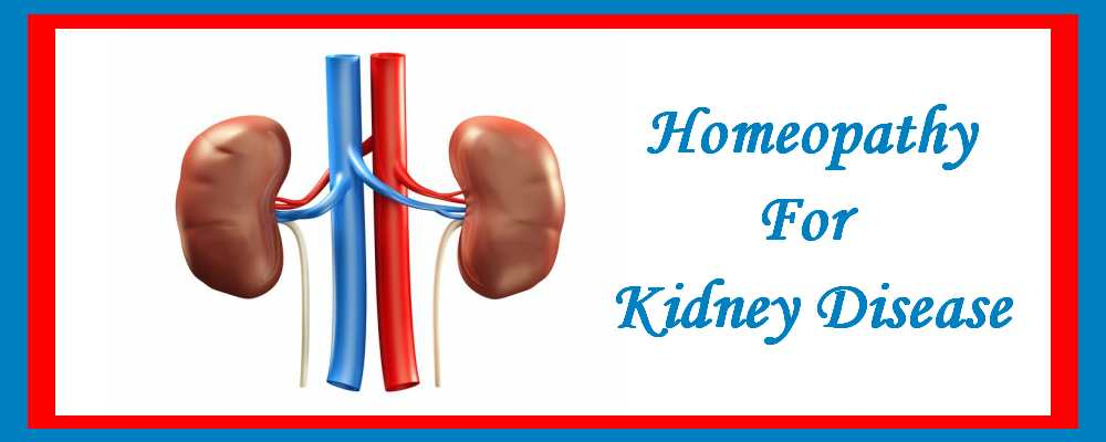 Homeopathic medicine for Kidney Diseases