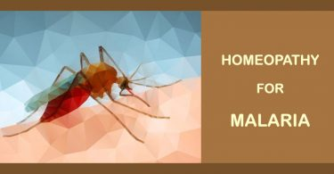 malaria homeopathy