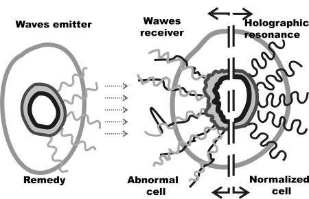 'Biophotonic Resonator', A Connecting Matrix. From Exogenous Homeopathy to Bio-Psychic Health Fundamentals (l) 6
