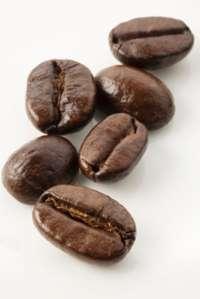 Coffea Cruda Saves a Leg 1