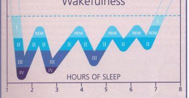 wakefullness
