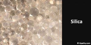 homeopathic medicine for molluscum contagiosum