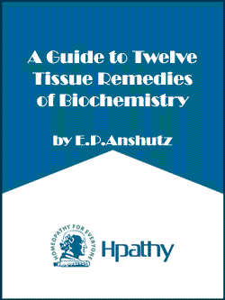 A-Guide-to-Twelve-Tissue-Re