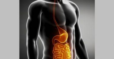 DigestiveDisorder