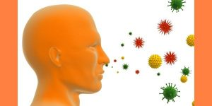 immunology allergy