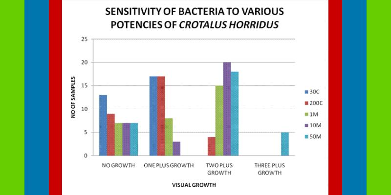 what is in vitro antibacterial activity