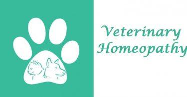 vetrinary homeopathy