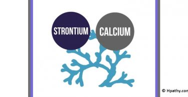 Strontium and Calcium: Homeopathy and Allopathy Meet