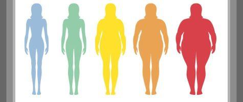 Body Mass Index (BMI) Calculator
