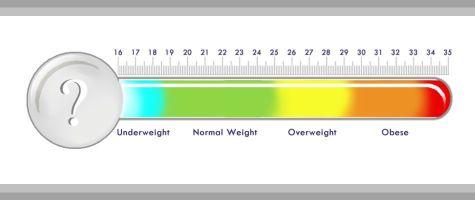 BMI Chart for Women & Men