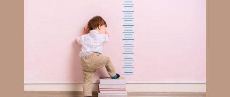 Childrens Height Predictor